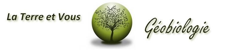 dans le logo du site laterreetvous, l'arbre représente la vie qui sort de terre (humain) pour évoluer jusqu'au ciel (divin)